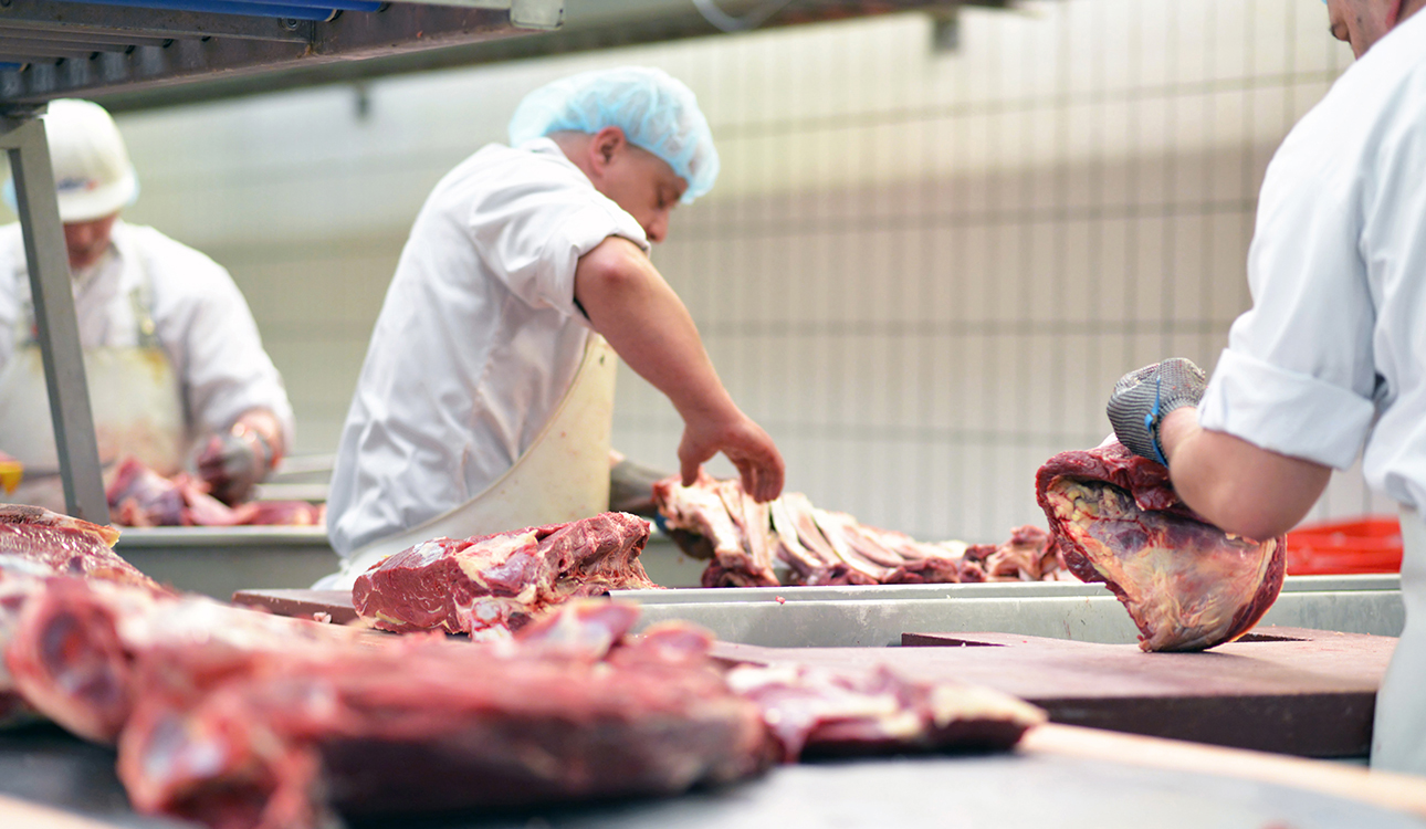 Processing Plant Food Safety Compliance