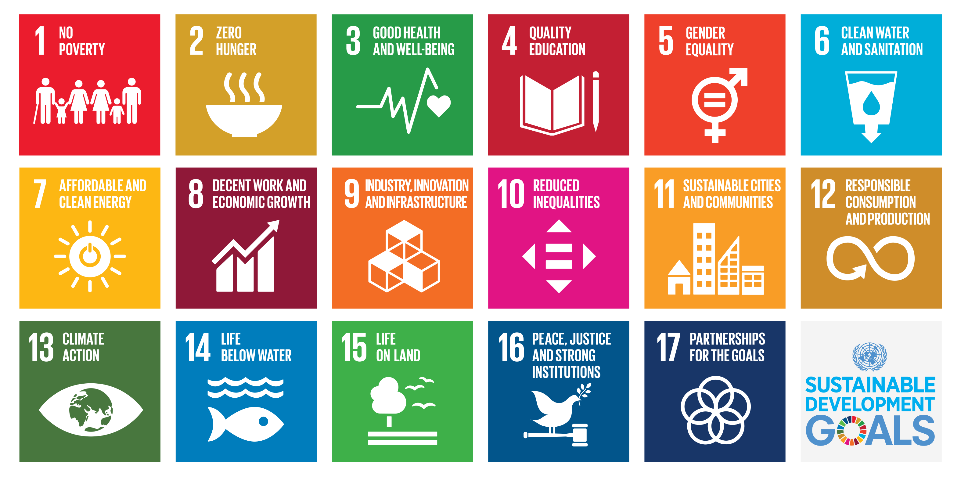 17 Sustainable Development Goals (SDGs) used to develop the new Diversey sustainability strategy.