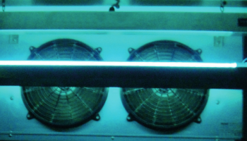 uv disinfection for food and beverage