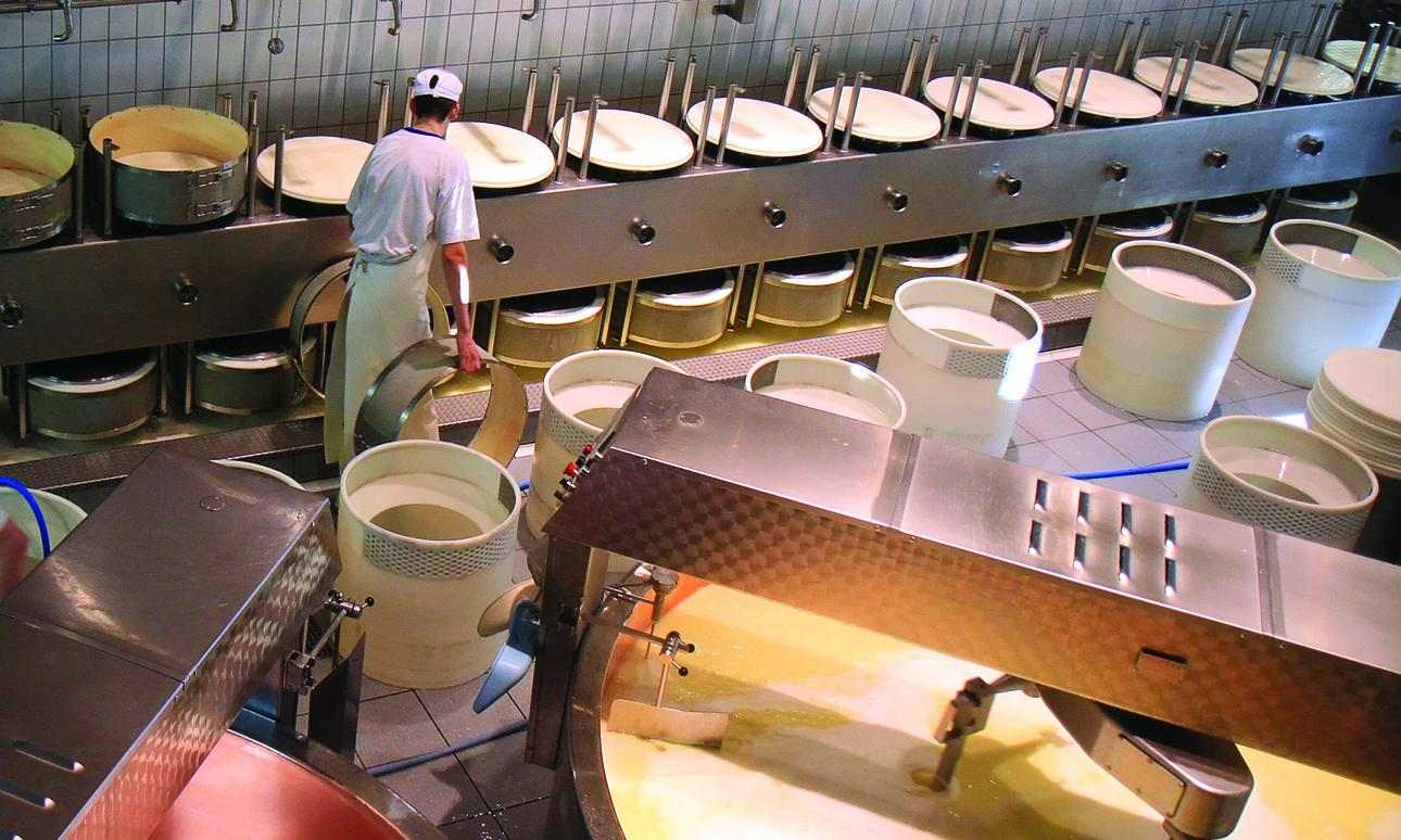 Hygiene routines in Italian cheese production